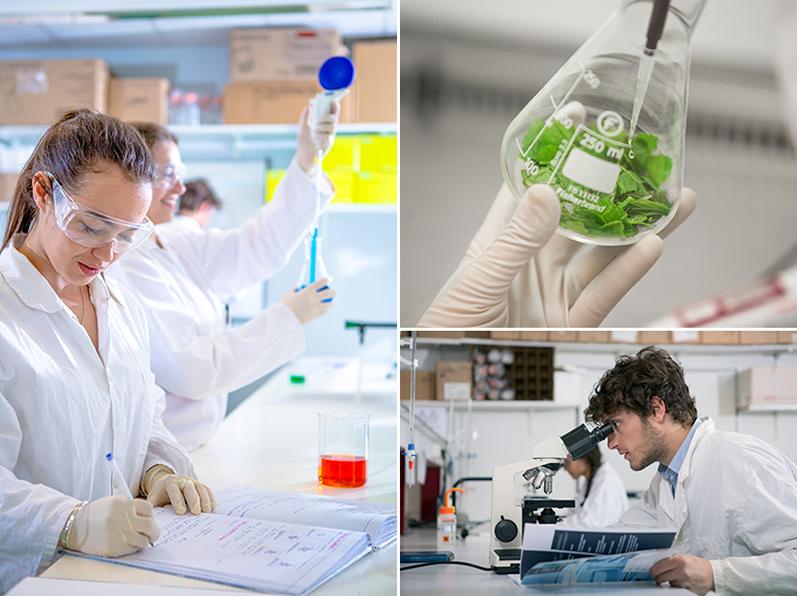 À la rentrée, Sup'Biotech inaugurera son laboratoire culinaire