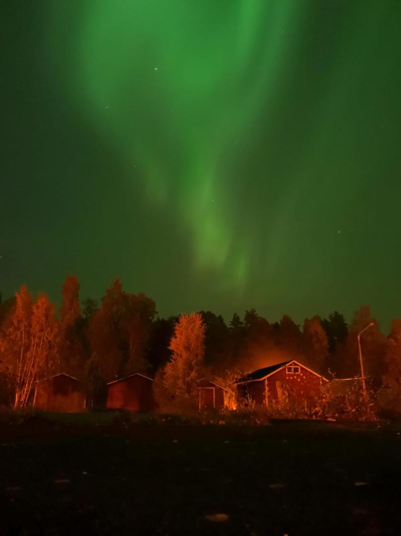 Une année internationale en Finlande: de Sup'Biotech à Kokkola